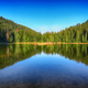 mountain lake among the green fir forest in picturesque summer l - PhotoDune Item for Sale