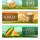 Cereals Banner Set - GraphicRiver Item for Sale