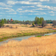 Rural landscape with high dry grass - PhotoDune Item for Sale
