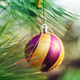 Christmas decor - PhotoDune Item for Sale