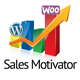 WooCommerce Sales Motivator WordPress Plugin