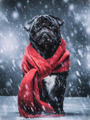Black pug dog gazing sadly in a winterstorm. - PhotoDune Item for Sale