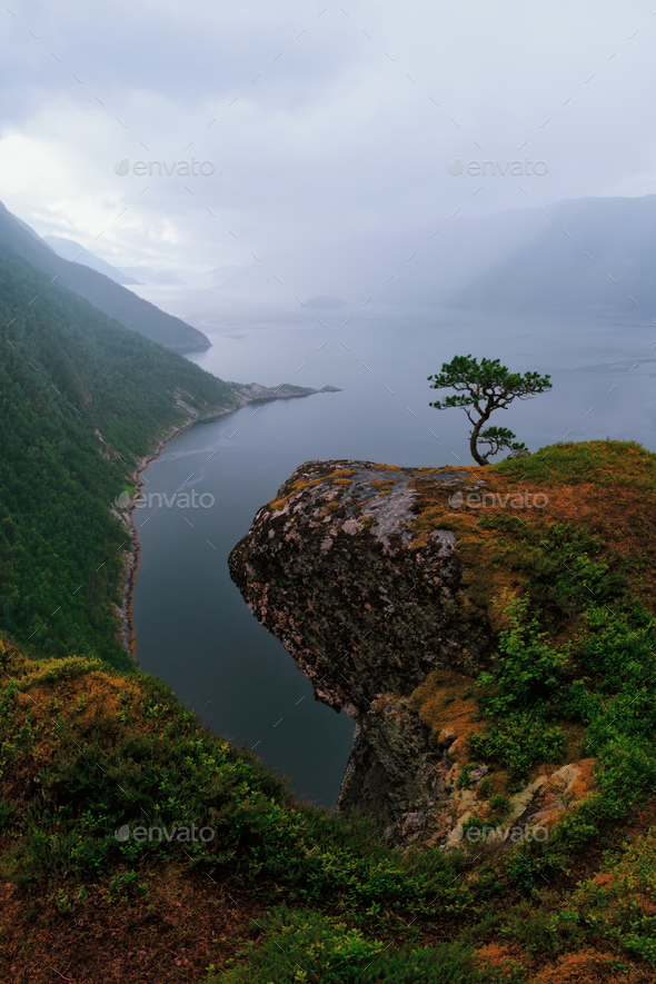 Misty morning on Tingvollfjorden flord - Stock Photo - Images