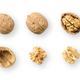 Walnuts, whole and opened, on white background - PhotoDune Item for Sale
