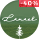Laurel - A WordPress Blog & Shop Theme - ThemeForest Item for Sale