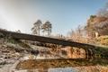 winter creek - PhotoDune Item for Sale
