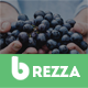 Brezza Fruit Store Shopify Theme & Template - ThemeForest Item for Sale