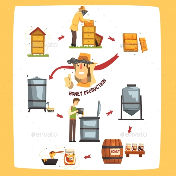 Honey Production Process Stages Beekeepers - Food Objects