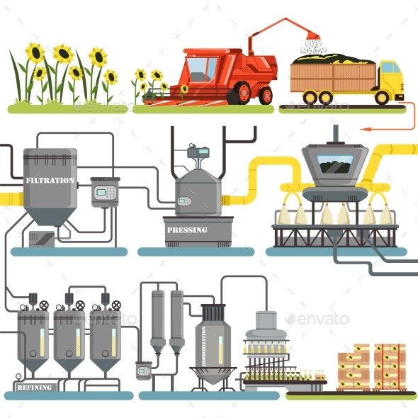 GraphicRiver Sunflower Oil Production Process Stages 21028527