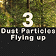 Dust Particles Flying Up - VideoHive Item for Sale