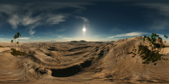 VideoHive VR 360 Degree Aerial Panorama of Palms in Desert 21031617