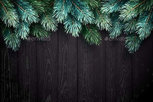 GraphicRiver Christmas Background with Fir Branches on a Black 21033976