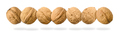 Whole walnuts in a row levitating on white background - PhotoDune Item for Sale
