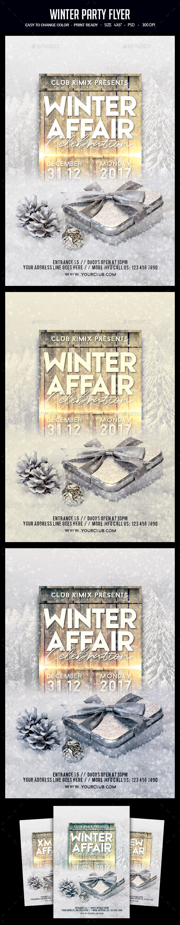 GraphicRiver Winter Party Flyer 21034866