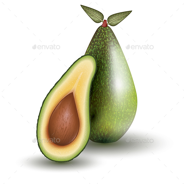 GraphicRiver Avocado Isolated on White Background Vector Illustration 21035132