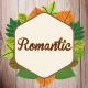 Romantic Story Font