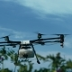 Agriculture Drone Flying on Flowers Field - VideoHive Item for Sale