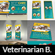 Veterinarian Clinic Advertising Bundle - GraphicRiver Item for Sale