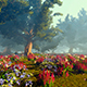 Field With Flowers And Trees - VideoHive Item for Sale
