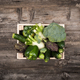Fresh tasty vegetables in a wooden crate - PhotoDune Item for Sale