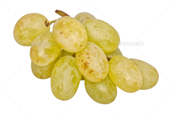 Grapes on a white background - Stock Photo - Images
