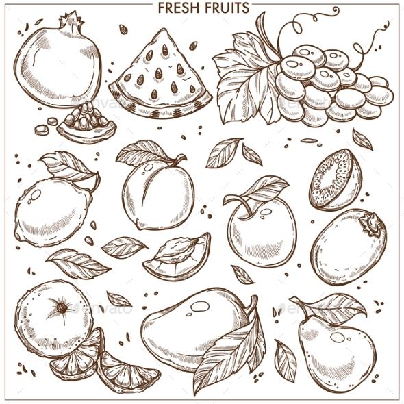 GraphicRiver Fruits Sketch 21043842