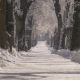Park Alley in the Snow - VideoHive Item for Sale