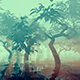 Fog Above The Marsh - VideoHive Item for Sale