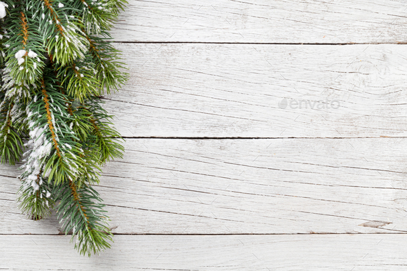 Christmas fir tree - Stock Photo - Images