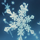 3D Snowflakes  - VideoHive Item for Sale