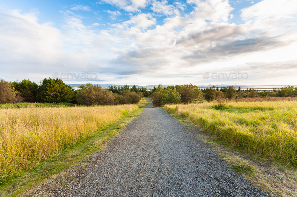 dirt road in the vicinity of Reykjavik city - Stock Photo - Images