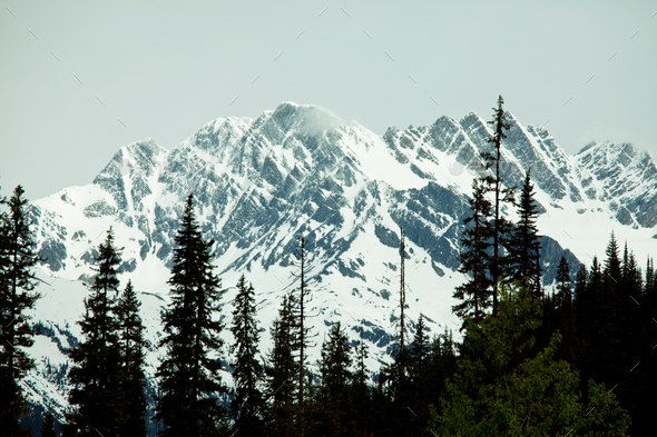 Mountains in Canada - Stock Photo - Images