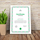 Multipurpose Certificates - GraphicRiver Item for Sale