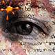 Digitalbook Photoshop Action - GraphicRiver Item for Sale