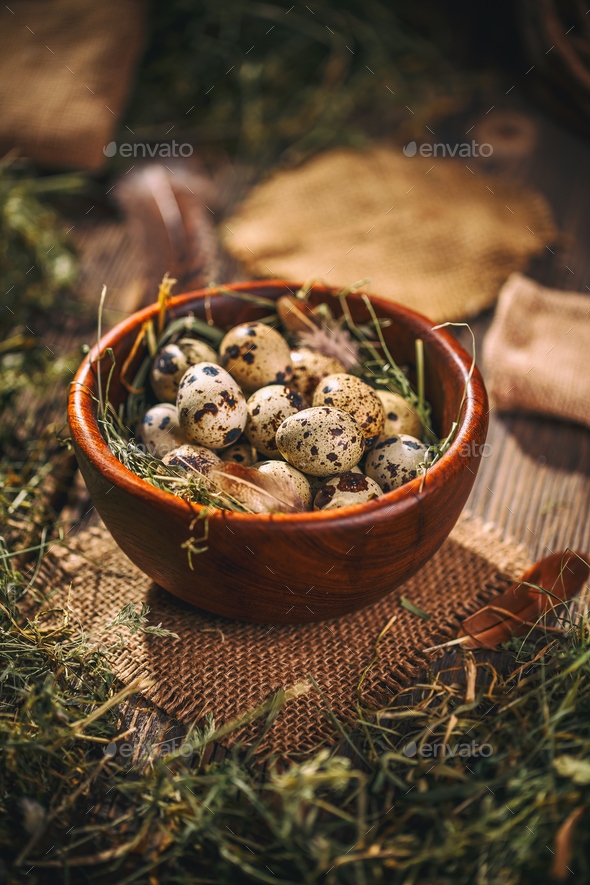 Quail eggs in wooden bowl - Stock Photo - Images