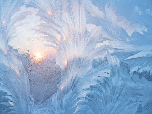 Frost and sun - Stock Photo - Images