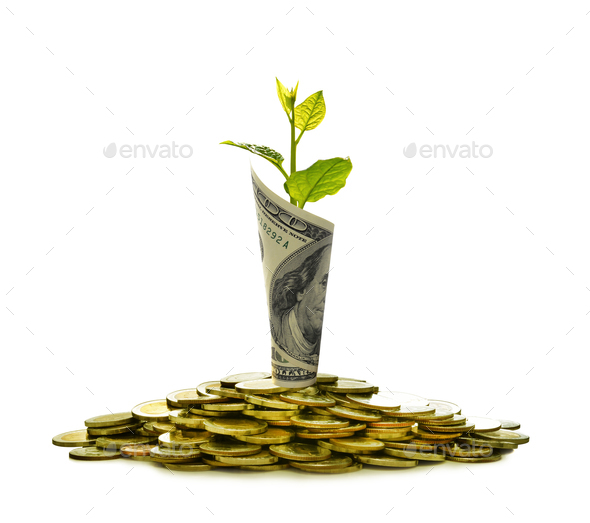 Pile of coins and rolled bank note with plant on top - Stock Photo - Images