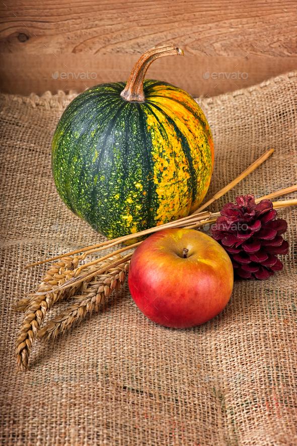 Autumn decoration - Stock Photo - Images