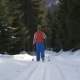 Lone Young Woman Cross Country Skiing - VideoHive Item for Sale