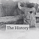 The History - VideoHive Item for Sale