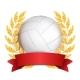 Volleyball Award Vector