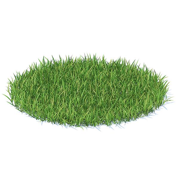 Grass 3D Model - 3DOcean Item for Sale