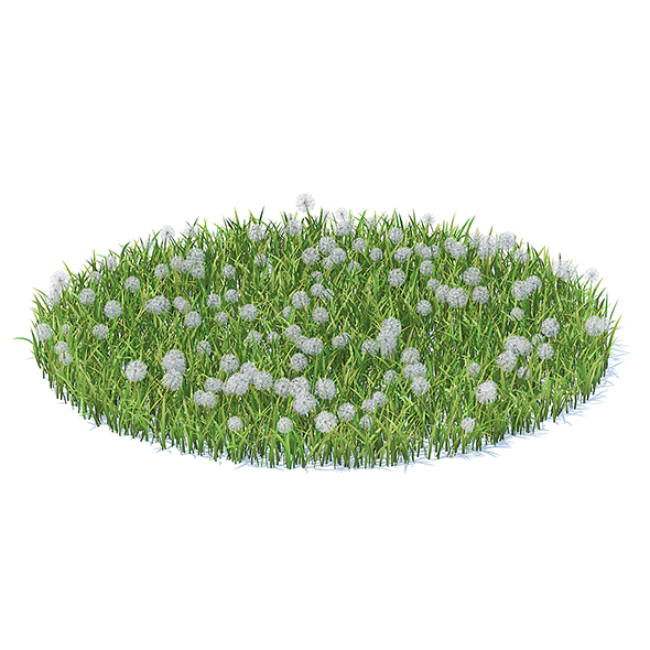 Grass with Sow-thistles 3D Model - 3DOcean Item for Sale