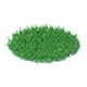 Grass with Clover 3D Model