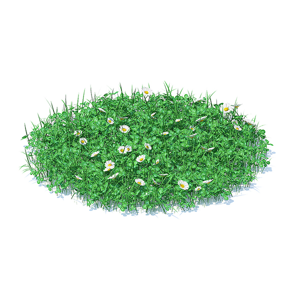 Grass with Clover and Daises 3D Model - 3DOcean Item for Sale