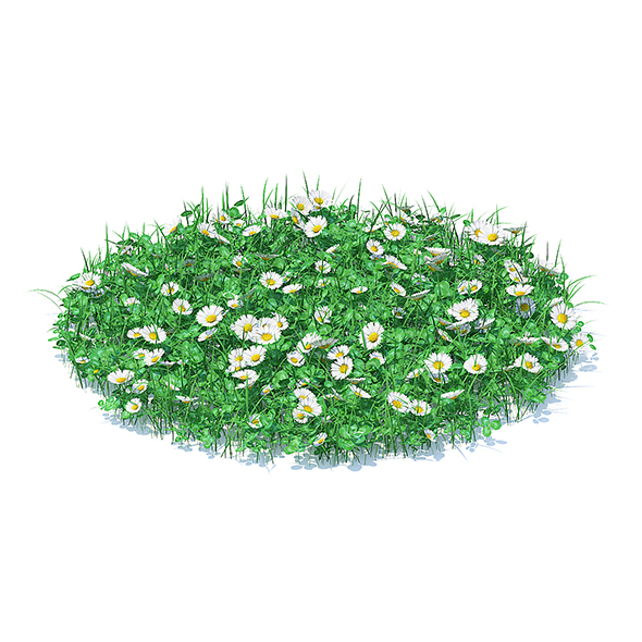 3DOcean Grass with Clover and Daises 3D Model 21062073