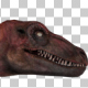 Dinosaur - Red Velociraptor Walk Animation - VideoHive Item for Sale