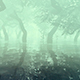 The Mysterious And Fabulous Forest In The Fog - VideoHive Item for Sale