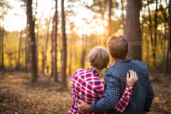 Senior couple on a walk in an autumn forest. - Stock Photo - Images
