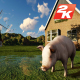 Farm Villa Garden and Pig - VideoHive Item for Sale